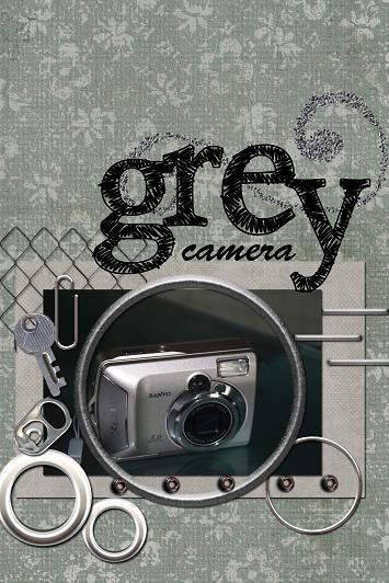 grey camera 30