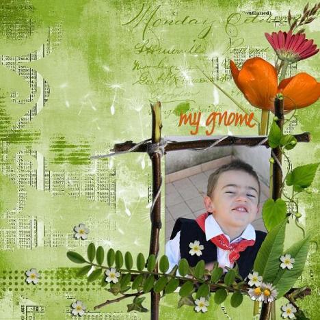 my gnome 18